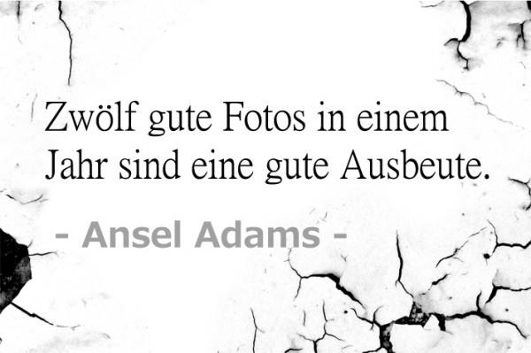 Foto-Ausbeute-Zitat