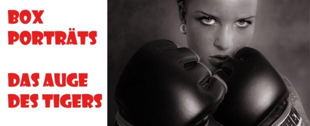 Box-Portraits-Blog-Titelbild