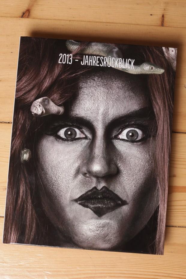 Cover des Buches - Jahresrückblick 2013