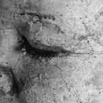 Stein-Gesicht