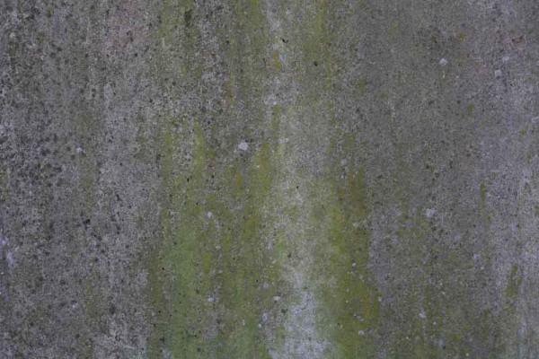 Stein-Textur - Grün