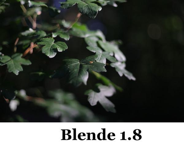 50mm Blende 1-8