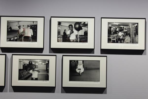 Fotos Glen Craig - Leica galerie photokina